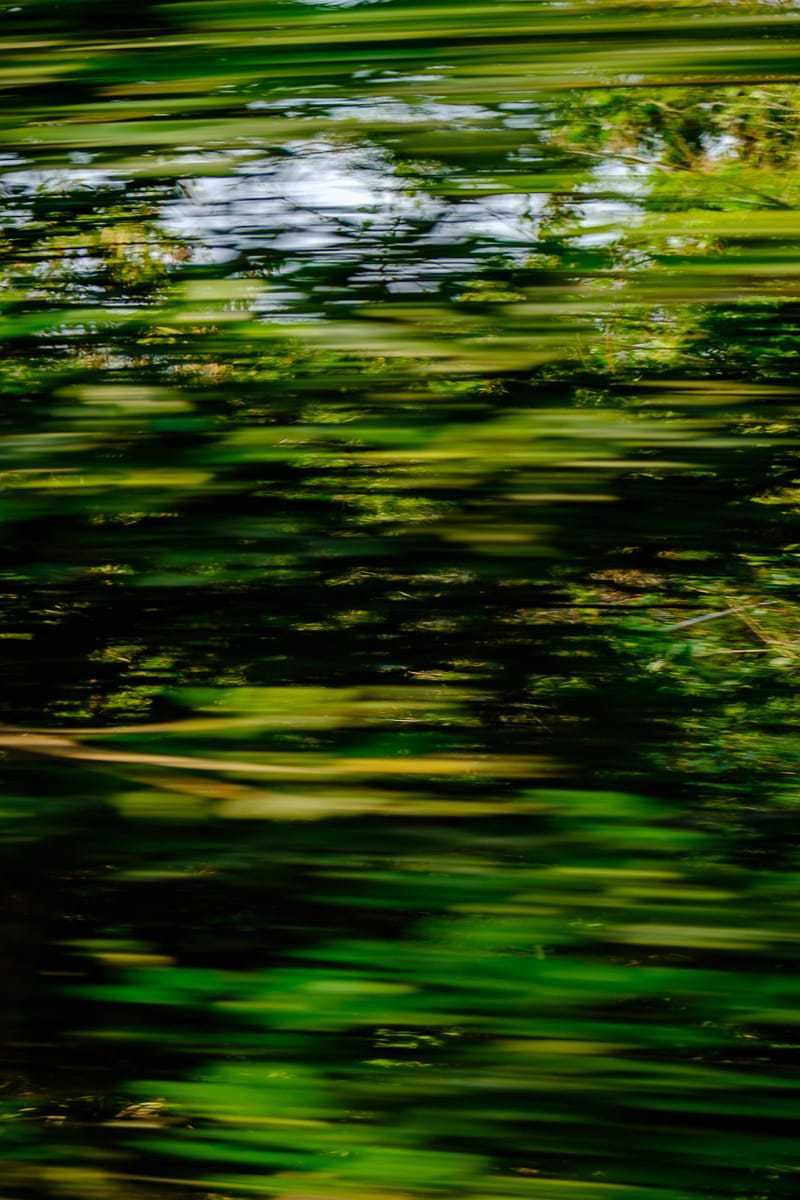 Travel photos | Abstract seen from the Bangkok - Kanchanaburi train, Thailand.