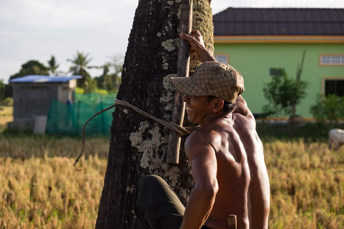 Khmer farmer smiles before he climbs a palm tree
