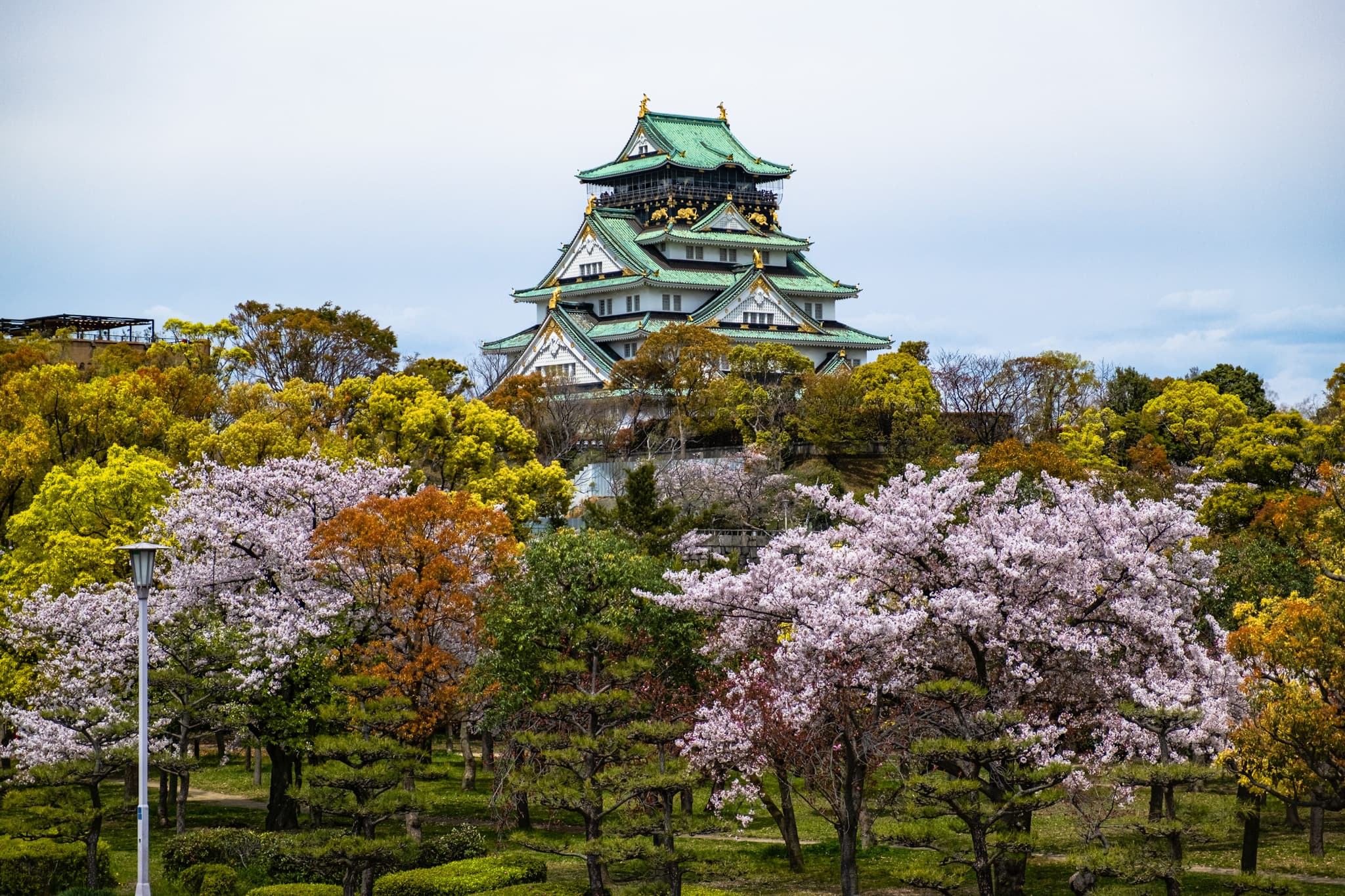 Osaka Castle Park and Cherry Blossoms.⁣ Osaka, Japan.⁣ The park is colourful.