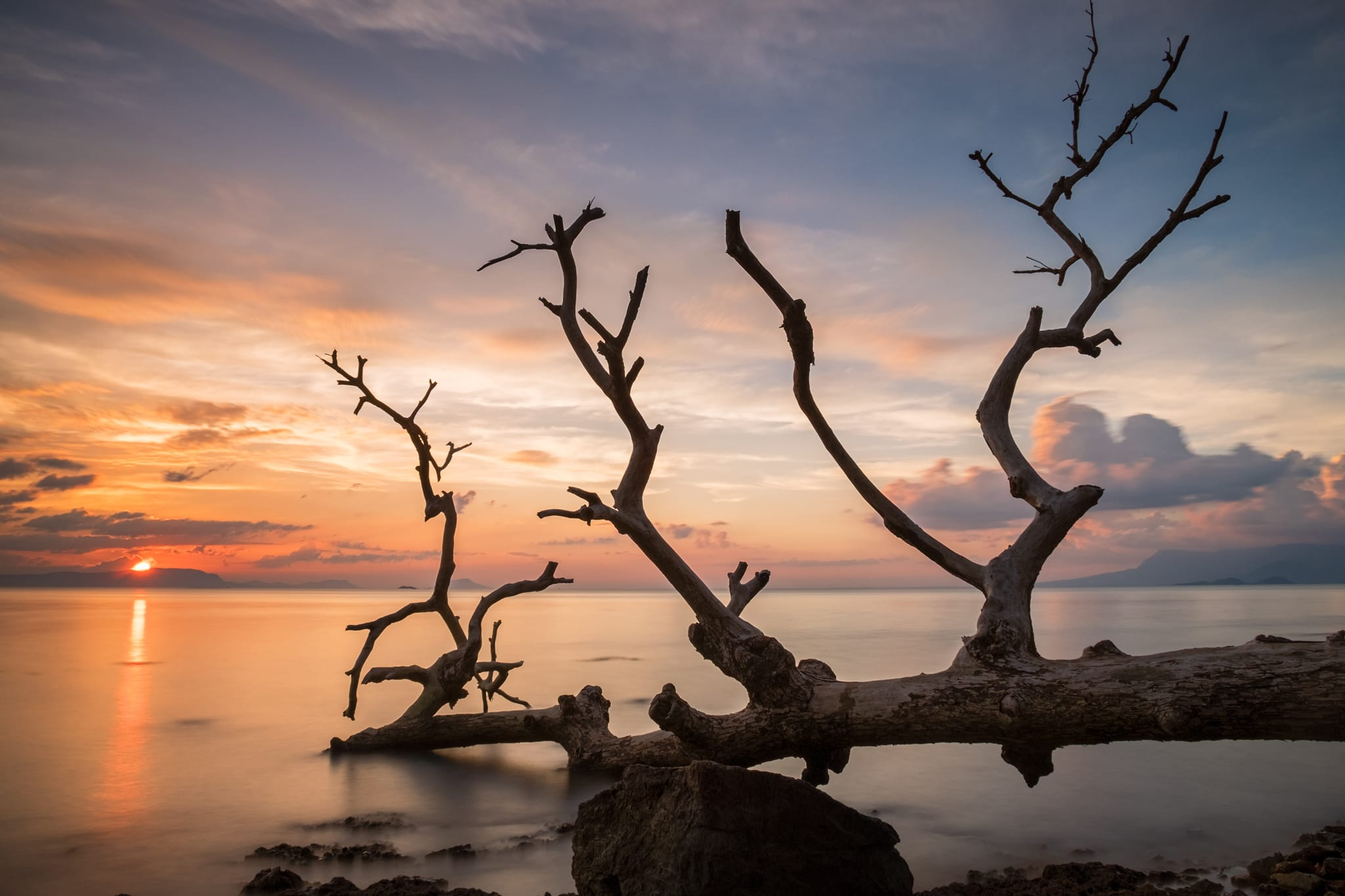 Long exposure photo of dead tree on the shore and sunset at Kep Beach. Kep, Cambodia. Sea water looks silky.